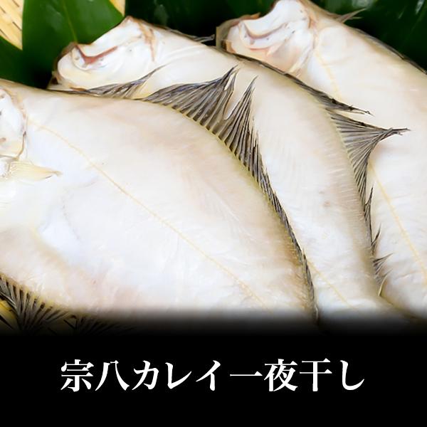 【北海道産】宗八カレイ一夜干し 1枚
