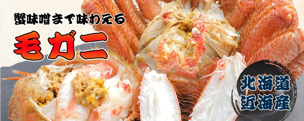 蟹味噌まで味わえる毛ガニ