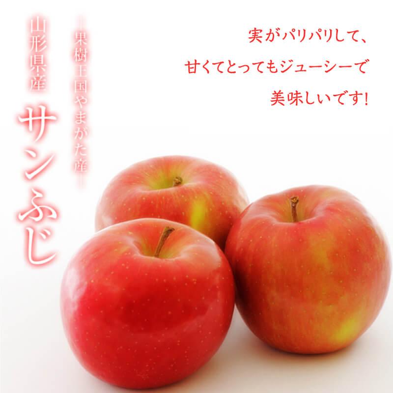 自家用完熟サンふじりんご<5kg>約15玉~25玉