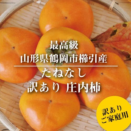 庄内柿03