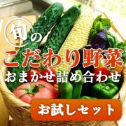 野菜お試し