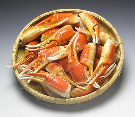 ズワイカニ爪 (L)1kg ~殻に切れ目があるので食べやすい~
