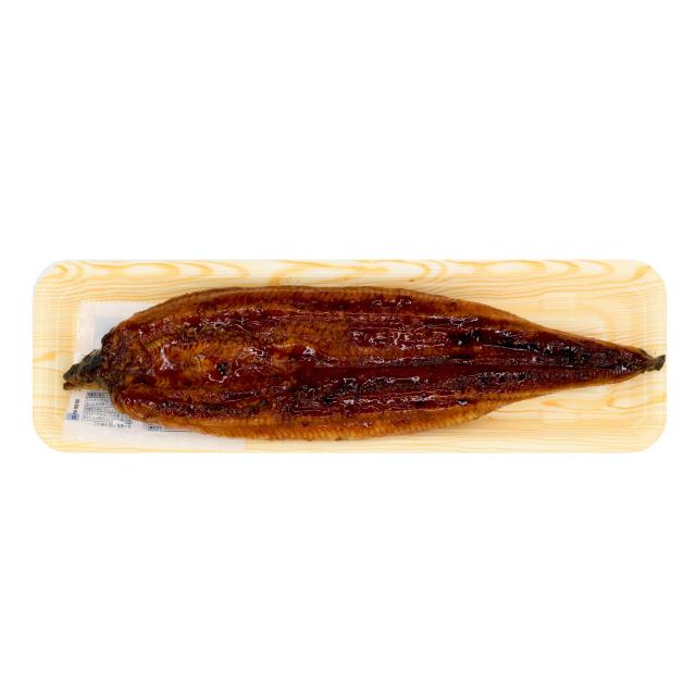 うなぎ蒲焼(ウナギ 鰻)