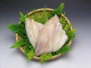 つぼ鯛(一汐)【国産】特大4枚 ~漁獲が少なく希少~
