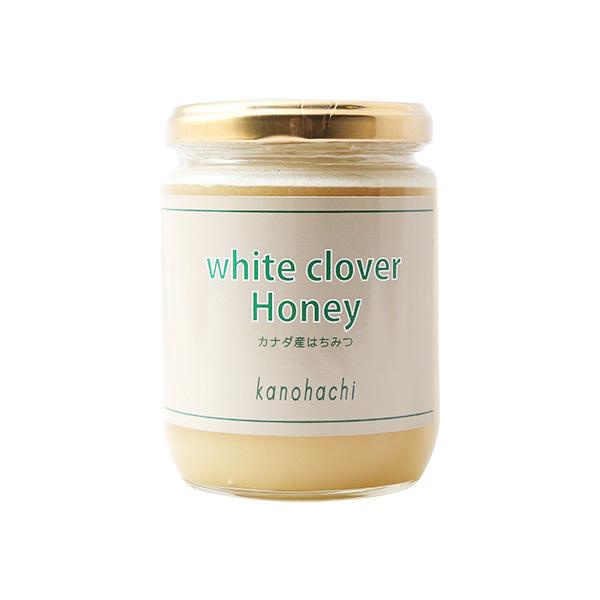 【世界の蜂蜜】カナダ産ホワイトクローバー蜂蜜300g