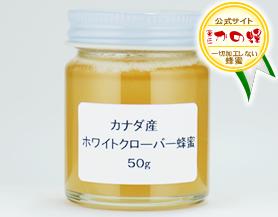 【世界の蜂蜜】カナダ産ホワイトクローバー蜂蜜50g