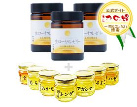 【ローヤルゼリー】中国産純粋生ローヤルゼリー100g×3本 蜂蜜選べる3種類プレゼント