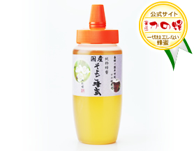 【国産蜂蜜】国産そよご蜂蜜500g(とんがり容器)