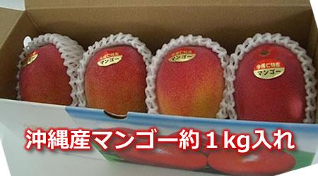 沖縄マンゴー約1kg入れ