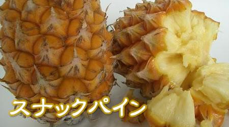 沖縄産 スナックパイン