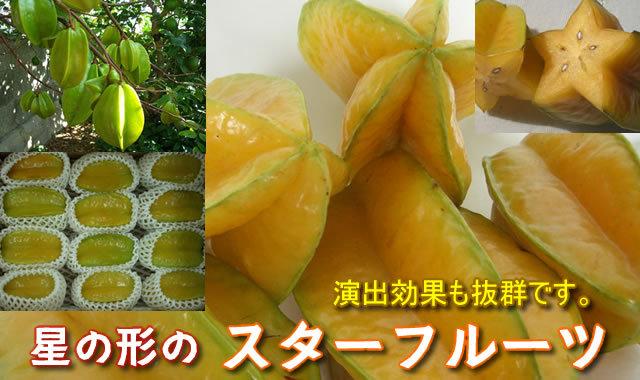 沖縄 スターフルーツ