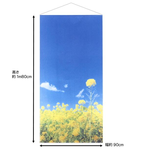 新菜の花スクリーン・タペストリー