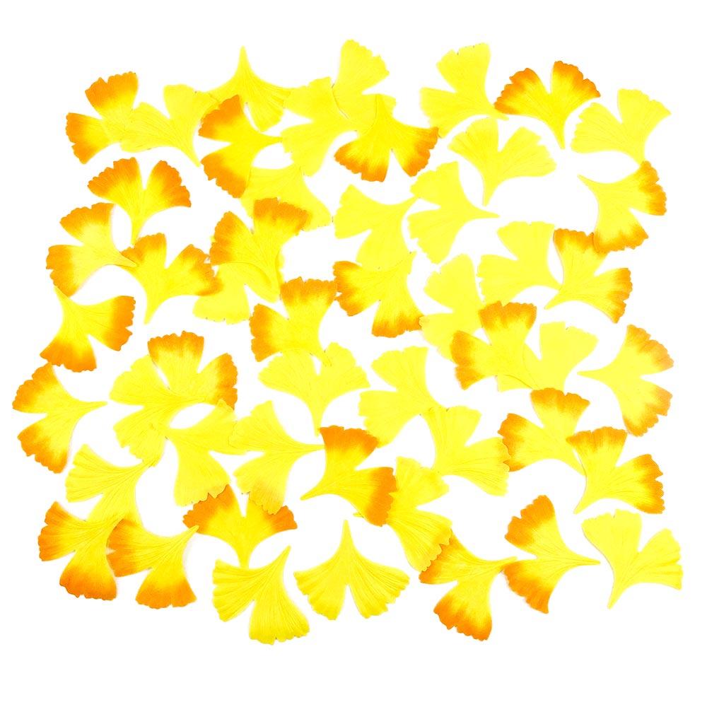 イチョウ落ち葉セット_01