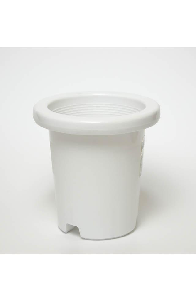ケンガイ鉢