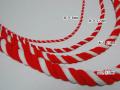 紅白紐写真