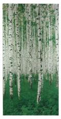 白樺林タペストリー
