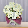 弔・胡蝶蘭造花