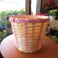 お花やグリーンがもっと素敵になりますよ♪バスケット鉢カバー(ピンクライン)5号鉢サイズ 【観葉植物 ミニ インテリアグリーン 鉢花 鉢カゴ 鉢かご バスケット】