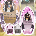 メモリアルクリスタル コーン ピンク PHOT用 手元供養セット