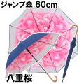 ジャンプ傘 八重桜
