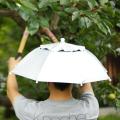 帽子の日傘