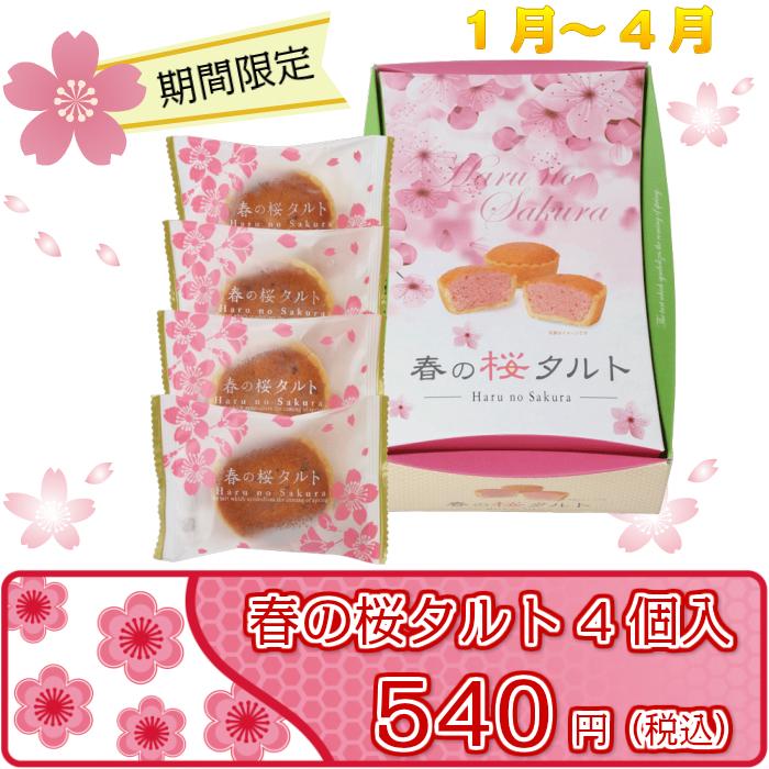 春の桜タルト4個入