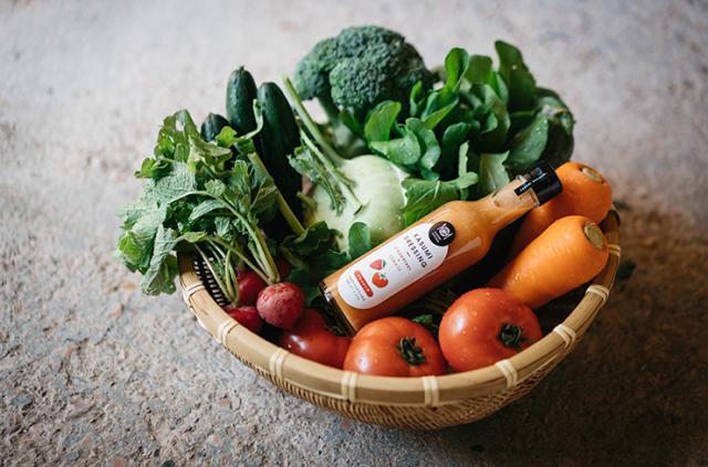 送料無料 旬の野菜セット(7~9種)2~3名様分 ドレッシング付き
