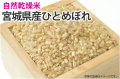 自然乾燥米ひとめぼれ
