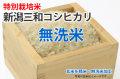 無洗米・特別栽培米新潟三和コシヒカリ