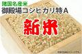 新米御殿場コシヒカリ特A
