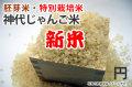 新米・胚芽米・神代じゃんご米