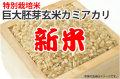 新米巨大胚芽玄米カミアカリ