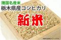 新米栃木県産コシヒカリ