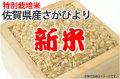 新米・特別栽培米さがびより