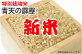 新米・特別栽培米青天の霹靂