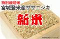 新米・宮城登米産ササニシキ