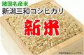 新米・新潟三和コシヒカリ