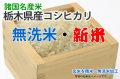 新米無洗米栃木県産コシヒカリ