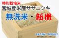 新米・無洗米・宮城登米産ササニシキ