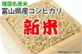 新米・富山県産コシヒカリ