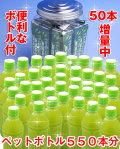 【送料無料(沖縄除く)】【有機栽培の川根茶を100%使用】【11袋セット】10秒簡単!!『500mlのペットボトル緑茶』がドカーンと500本作れる!更に今なら10%増量して送料無料(沖縄除く)