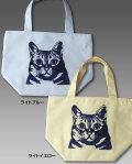 【猫柄】カツミアート(松下カツミ)保冷トートバッグ:アンディ