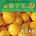 柚子玉約3kgイメージ 商品イメージ