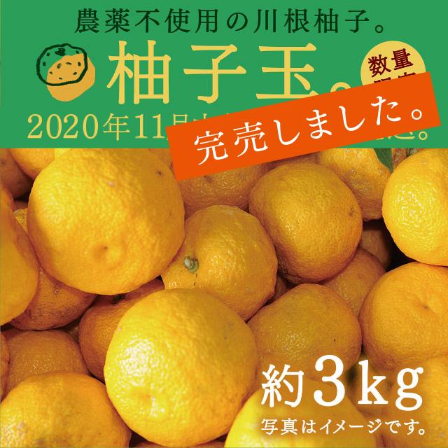 (完売)柚子玉約3kg