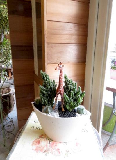 0397【アニマルガーデン】観葉植物ギフト キリンとセレウスサボテン(白鉢深型)