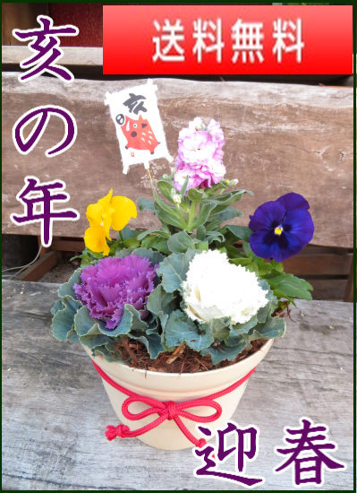 早割り★亥の年 冬の花いっぱいの屋外用迎春玄関かざり赤紐【お歳暮迎春ギフト】