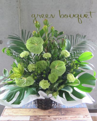 0465夏の御祝いにおすすめグリーンたっぷりの生花アレンジメント【観葉倶楽部グリーンブーケ】冬もご注文いただけます
