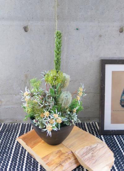 0480フェイクグリーン観葉植物ギフト ネイティブグリーンアレンジ