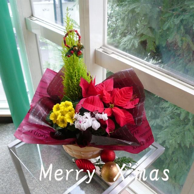 早割りクリスマスの贈り物に♪【送料無料】~Merry X'mas!クリスマスバスケット