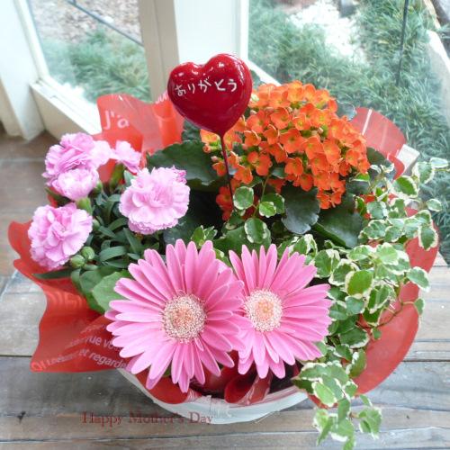 花鉢おまかせバスケット773花の母の日ギフト【送料無料母の日ギフト】md041